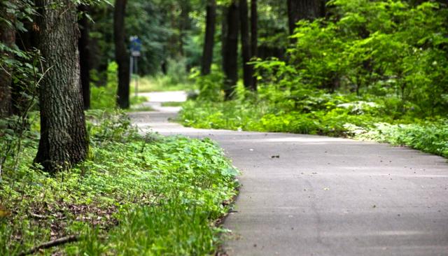 Perfekter Radweg kurz vor Guben
